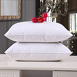 24X24 Cushion/Cushion Filler/Cushion Pillow For Sofa-Set of 2-White-By Cloth Fusion