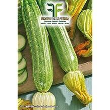❦ 60 C.ca Semi Zucchino Romanesco - Cucurbita Pepo In Confezione Originale Prodotto in Italia