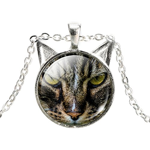 ferity-gato-montes-vidrio-tiempo-gem-mujeres-novedad-estilo-kitty-miau-oreja-colgante-collar