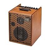Acus One for Street Wood · Akustikgitarren-Verstärker