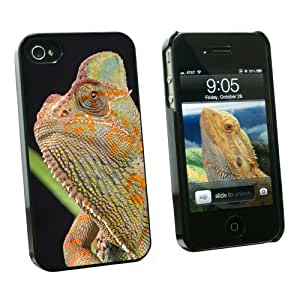 Graphics and More Veiled Chameleon - Lizard Reptile - Snap On Hard Protective Case for Apple iPhone 4 4S - Black - Carrying Case - Non-Retail Packaging - Black