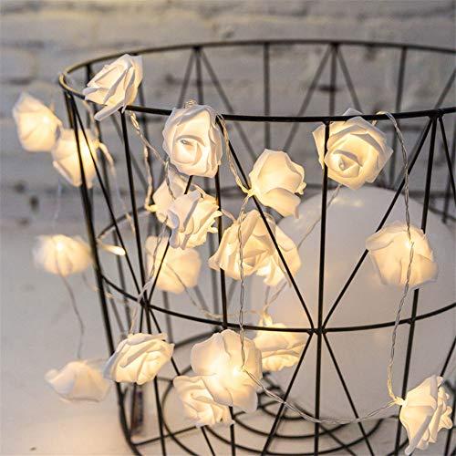 Hochzeit Raumdekoration Lampe Warmweiß Rose Lichterkette Heiratsantrag Märchen Licht Festival Led Lichterkette 3 M 20 Licht Batteriekasten