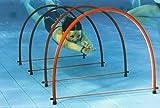 Sport-Thieme Halbrund-Tauchreifen Stand up