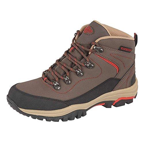 Northwest Territory , Chaussures de randonnée basses pour femme Brown / Red