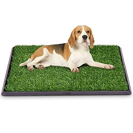 GOPLUS Hundetoilette, Welpentoilette, Trainingsunterlage für Hunde, Hundetöpfchen, Hunde Training, 51x76cm