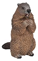 Papo PAP50128 Marmotta - Misure: