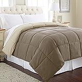 Amrapur Overseas 2DWNCMFG Goose Down Alternative Microfiber Quilted Reversible Comforter/Duvet Insert-Ultra Soft Hypoallergenic