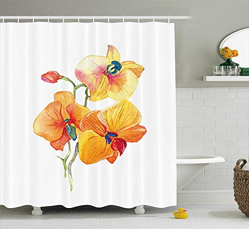 Das Exotic Home Fragrance Oil (LongTrade Floral Shower Curtain Duschvorhang Orchid Petals Wild Flower Exotic Fragrance Pure Florets Elegance Watercolor, Fabric Bathroom Decor Set with Hooks Marigold Yellow 72x72 inch)