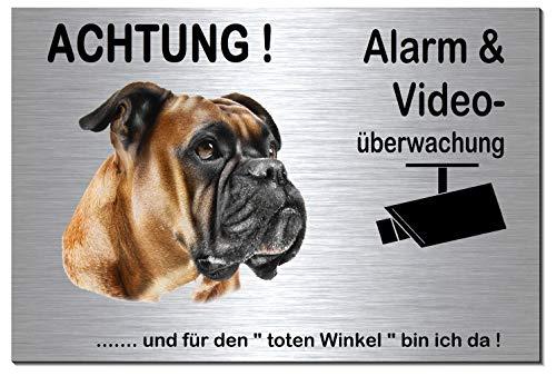 Preisvergleich Produktbild Boxer-Alarm-Video-Überwachung-Hund-Schild-Hundeschild-Aluminium Edelstahloptik-Hunde-Tierschild-Warnschild-Hinweisschild 133-3 (133-3 silber 300 x 200 x 3 mm mit Löcher)