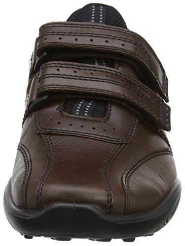Hotter Herren Energise Sneaker Brown (Conker)