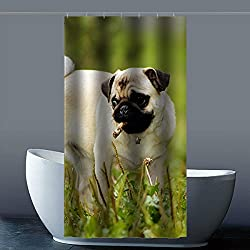 costumbre Pug Dog Perro Carlino – 100% poliéster fábrica cortina de ducha Shower Curtain, poliéster, a, 36x72(inches)