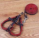 CHONGWU Einstellbare Cowboy-Hundegeschirr mit Leine Hundeleine Haustier-Bügel-Seil (Seillänge 120 cm), 1.0cm Chest and Back