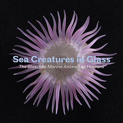 Sea Creatures in Glass: The Blaschka Marine Animals at Harvard (English and German Edition) by Elizabeth Brill (2016-10-20)
