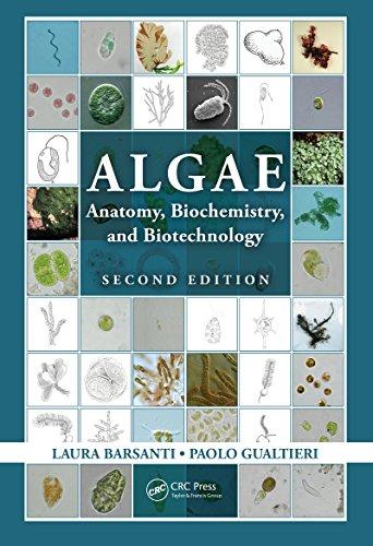 Algae: Anatomy, Biochemistry, and Biotechnology, Second Edition por Laura Barsanti