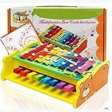 2 in 1 Baby Musical Spielzeug Klavier und Xylophon Regenbogen Xylophon Brücke mit 16 Helle Mehrfarbige Tasten und Zwei Schlägel Kids 'First Musikinstrument Spielzeug (Bär)