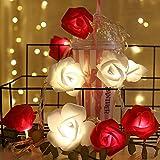 Shirylzee Guirlande Lumineuse Rose 3M 20 LED À Piles Fleur Rose Blanc Chaud Rose Fées Lumières Romantique Maison Jardin Décoration pour Mariage Fête la Saint Valentin Noël (Rouge-Blanc)