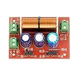 2Pcs 400W Altavoz Ajustable Agudos/Graves 2 Unidades Divisor de Frecuencia de Audio Filtros de 2 Vías Crossover