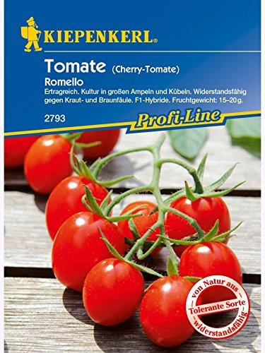 Tomate Pflaumen-Tomate Romello