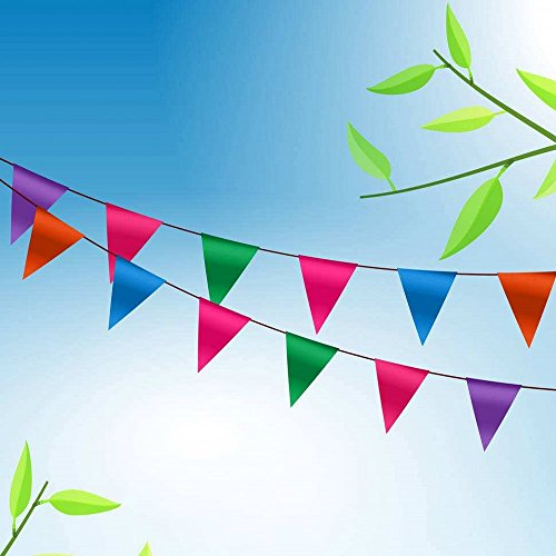 Topeedy 80 m Multi-Color Pennant String Rattail Braided Nylon Bunting Banner Bunting for Indoor Outdoor Party Home Garden Decoration, 120Flags - Bunting Nylon