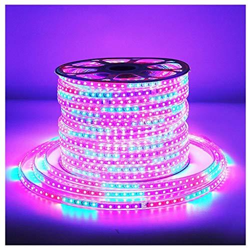 Famiglia Striscia LED Impermeabile Illuminazione Flessibile Decorative Strisce per Luci Decorative Natale Halloween Nozze E Festa Decorazioni (Size : 200m)
