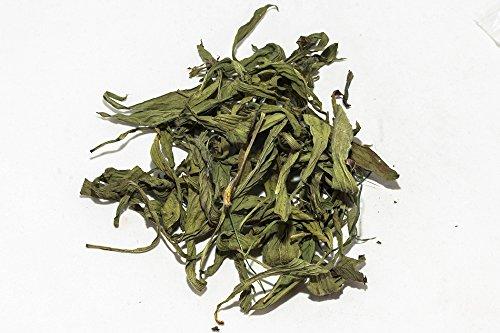 Nano Spitzwegerich Blätter (grün getrocknet), 5g - Garnelen- Wasserschnecken- und Krebsfutter