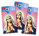 cardbox Motiv: MADONNA / MARIA neu (cb Nr. 068) /// 3er SET /// Führerscheinhülle, Bankkartenhülle, Personalausweishülle