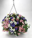 Decoline Kunstpflanze Blumenampel Ø40cm