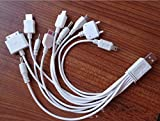 Domire 10 In 1 Universal USB Multi Charger Cable for iPod / iPhone / PSP / Camera / Nokia / HTC / LG / Samsung / BlackBerry(white )