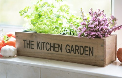 Kitchen Herb Garden Kit Windowsill Window Box Planter with Seeds