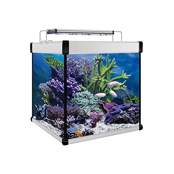 ICA KXMCU6P Kit Aqua Lux Pro 190 with Internal Filter, Silver