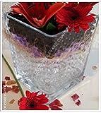 10 Tüten * TRANSPARENT * einfarbige Wasserperlen (MEDIUM 0,8-1,4 cm) von Deco-Boulevard - Ideale Sommerdeko, Winterdeko, Weihnachtsdeko und zu jedem Anlass! Dekoration zu Weihnachten, Blumen, Kerzen, Teelichter; Nutzbar als Eventdeko, Partydeko, Hochzeiten, Cocktailpartys, Events und Veranstaltungen. Auch bekannt als Wassermurmel, Gelperlen, Gelmurmel, Hydroperlen, Hydrogel, Aqua Pearls, Aquaperlen, Aqualinos, Ready Aqualinos