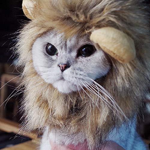 Haoda T-Shirt Regenjacken Daunenjacke Faneli Löwe Haar Kopfbedeckung für kleinen Hund und Katzen, Haustier Perücke,Katzenbekleidung mit Ohren für Katze nur, für Karneval, Kostüm, - Kostüm Für Katzen Nur