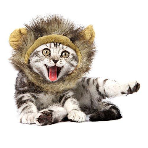 Pawaboo Peluca de mascota de gato de León: Tu mascota ganará mucha admiración al usar este disfraz. Es suave, duradero y lavable. Perfecto para el uso diario y ocasiones especiales, como Halloween, fiestas temáticas, Navidad, cumpleaños, desfiles, se...