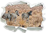 Zebra mandria in Erba Selvatica, di Carta 3D Autoadesivo della Parete Formato: 62x45 cm Decorazione della Parete 3D Wall Stickers Parete Decalcomanie