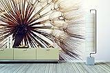 WandbilderXXL® Vlies Fototapete Pusteblume 420x280cm - hochwertige Tapete in 6 verschiedenen Größen für Wohnzimmer oder Büro - Foto Tapete - Qualität von Wandbilder XXL