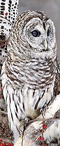 Hedwig textilbanner