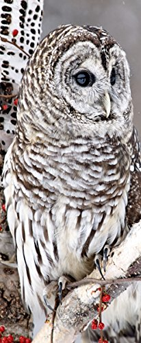"Textilbanner \""Hedwig\"" 90 cm x 180 cm Wanddeko Textilbild Banner Fotoprint"