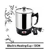 Lavanya Enterprises Electric Metal Kettle; 0.5 L (VTL-5013; Multicolour)