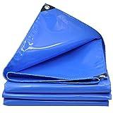 CHAOXIANG Plane Gewebeplane Verdicken Regenfestes Tuch Windschutzscheibe Sonnencreme Leicht Verschleißfest PVC, 600G/㎡, 11Größe (Farbe : Blue, größe : 2.8×3.8m)