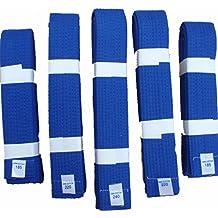 Las artes marciales–azul cinturones–cada tamaño, 320 cm