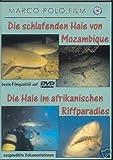 Die schlafenden Haie von Mozambique/Die Haie im afrikanischen Riffparadies