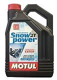 Olio lubrificante motor moto nieve SNOWPOWER 2T 4 L