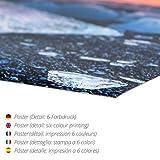 Poster 100 x 150 cm: Falco von Claudia Moeckel - Hochwertiger Kunstdruck, Kunstposter Test
