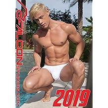 Falcon 2019 (Calendars 2019)