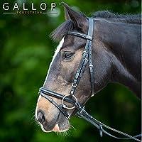 Gallop Brida acolchada y riendas de goma, negro - Full / Large