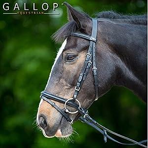 Gallop Zaumzeug aus Leder in Schwarz, Warmblut/Full
