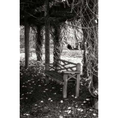 Feeling at home impresión x marco marco, fine art print-invierno Arbor II 89 x 58 cm
