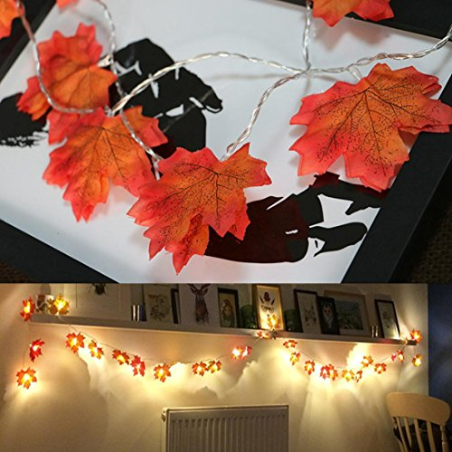 e DIY Dekoratives Licht Batterie AußEnleuchte Outdoor Dekorative Stringed LED String Lichter Laternen FüR Party, Weihnachten, Garten, Patio, Halloween, Dekoration (B) ()