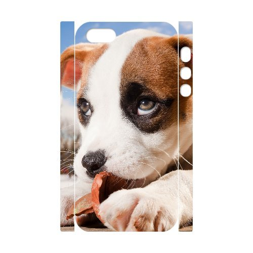 LP-LG Phone Case Of Pit Bull Terrier For iPhone 5,5S [Pattern-6] Pattern-4