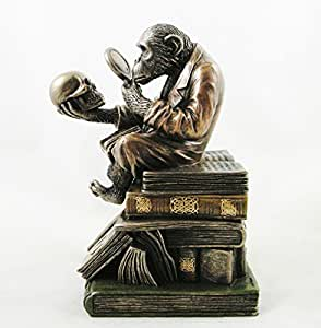 Darwin's Monkey Sitting on the Theory of Evolution by Charles Darwin - Bronzed 2 part box Figurine Statue Ornament by Veronese